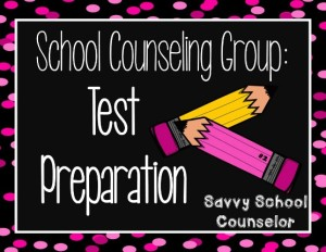 School Counseling Group:  Test Preparation - Savvy School Counselor